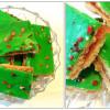 Rabarberpassionssnitter med hjemmelavet marmelade